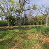 landgoed van de buitenplaats Berkenbosch 4