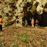 Asicen Forest Walk Mare Loyalty Islands