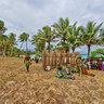 Lifou Missionary Arrival