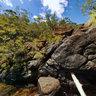 Parc Riviere Bleue New Caledonia Koureu Deni