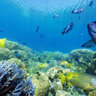 New Caledonia coral reef reserve
