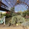Spider Web, Desert Botanical Gardens, Phoenix
