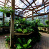 Tallahassee Nurseries
