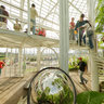 Botanical Garden Greenhouse