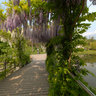 Trauttmansdorff botanical gardens 3
