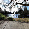 Powerscourt Gardens Triton Lake - Ireland