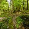Creek at Schelmenklinge