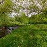 reka Bistrica leva pritoka Vlasine