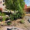 Student Sustainability Garden