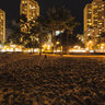 Waikiki Beach at night, Honolulu, Oahu, Hawaii