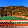 Autumn colour  from Oku-Ooi Rainbow Bridge of Oigawa Railway