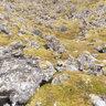 Berserkjagata (Berserks Path) Snæfellsnes Iceland