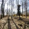 Bois De Sauvablin