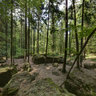 Naturdenkmal Druidenhain