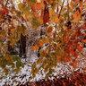 Erster Schnee in der Nähe der Esperhöhle