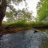 Idylle im Fluss