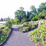 Giessen botanical Garden Botanischer Garten