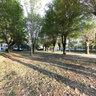Park Komarda