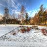 Park Snieg