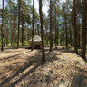 Lasy Piekne Z Natury