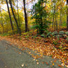 Autumn Road, Stonington, CT. USA