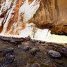 Zion National Park Virgin River Narrows