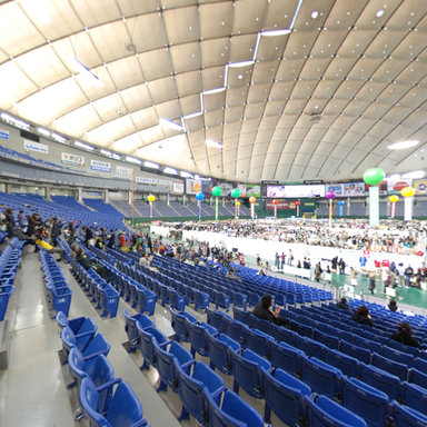 Tokyo dome japan for Japan dome house price
