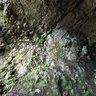 Großer Hermannstein - Goethes Cave, Ilmenau, Manebach