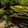 Cave Creek Resurgence, New Zealand