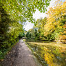 Aylesbury Canal /1