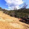 Bridle Track - Kalamunda