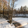 Spanderswoud pond