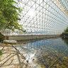 Biosphere2 ocean