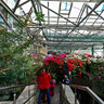 The greenhouse in the Kiev botanical garden