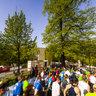 Der Hannover Marathon 2013 läuft ...