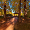 Canberra - Glebe Park in autumn
