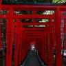 Hie Shrine - Torii Passage / 日枝神社・稲荷参道