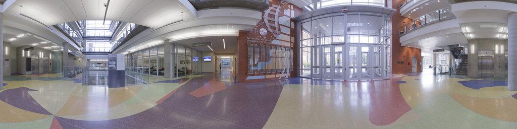CCIS, Entrance