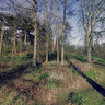 Christchurch Park panorama - 12 march 2014