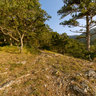 На вершине скалы ущелья Уч-Кош