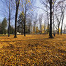 Autumn in the Park of J. B. Magin in Dubnica nad Vahom