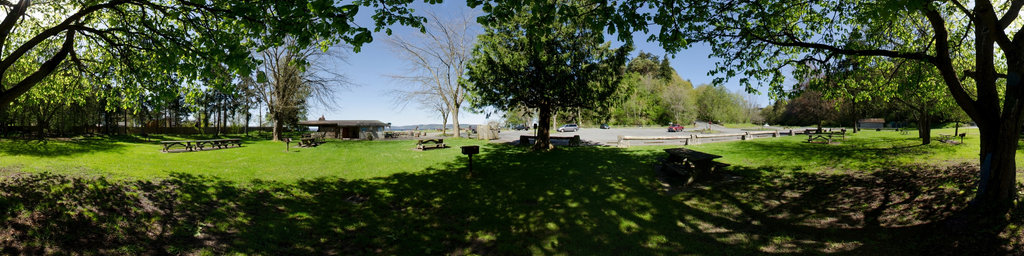 Picnic Area at Saltwater State Park, Washington