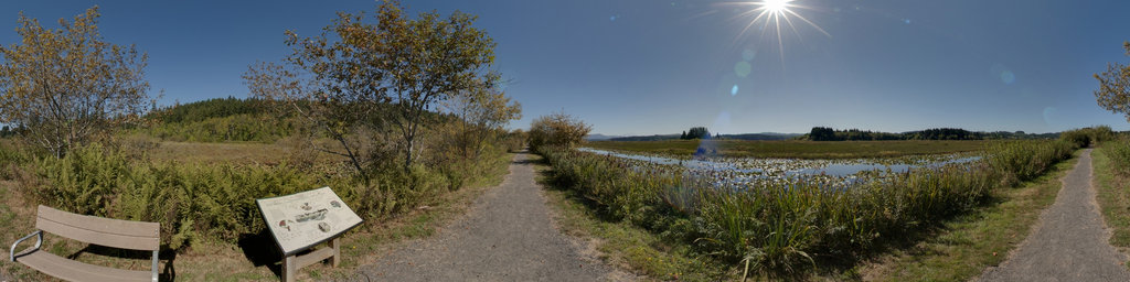 Silver Lake Trail at Seaquest State Park, Washington