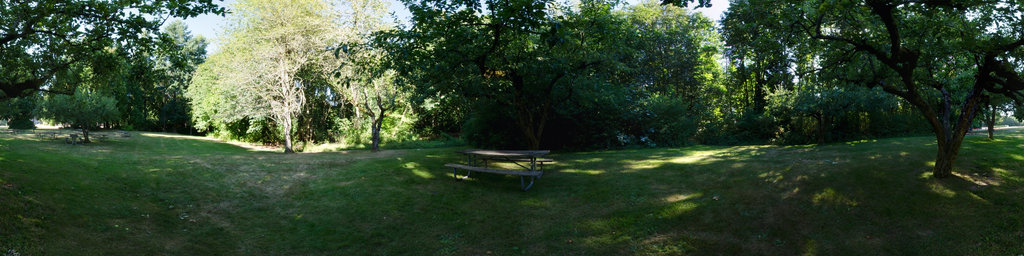 Orchard Picnic Area - Saint Edward State Park, Washington State