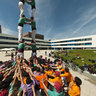 Human Towers