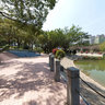 Tuen Mun Park: The Artificial Lake