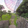 Ferris Wheel and fake river in Rinkai Park