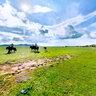 Bashang Grassland-shandian lake
