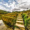 Terrace fields in Yuanyang 4——the masterpiece of the ingenuity of the Hani people yunnan