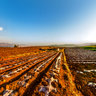 yunnan kunming Dongchuan Red Soil 6——Approached the red Soil